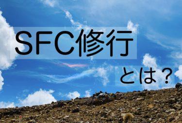 SFC修行とは?ANA上級会員への道