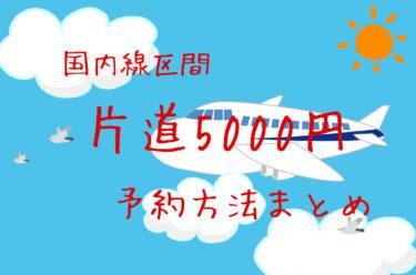 国際線乗継航空券・国内線区間は往復1万円で予約できる!